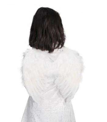 Alas angel de plumas.